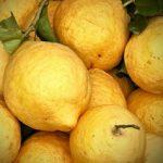 Lovely_Local_Lemons