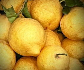 Lovely_Local_Lemons