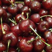 Organic_Cherries_NSW