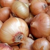 Onions_Brown