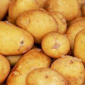Organic_Potatoes
