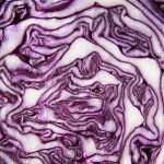 Organic_Red_Cabbage