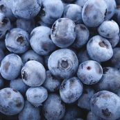 Organic_Blueberries