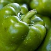 Organic_Green_Capsicum