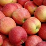 Organic_Pink_Lady_Apples