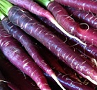 Organic_Purple_Carrots
