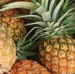 Organic_Pineapple