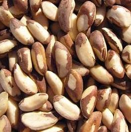 Organic_Brazil_Nuts