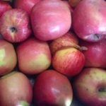Juicing_Apples