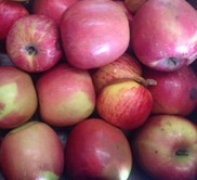 Juicing_Apples