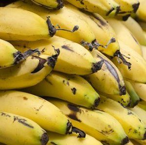 Organic_Smoothie_Bananas