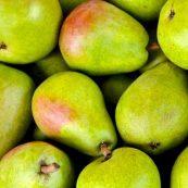 Organic_Pears