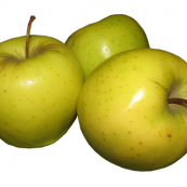 Golden_Delicious_Apples