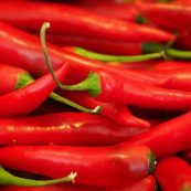 Fresh_Organic_Chillies